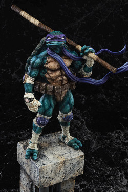 donatello turtles 10044409